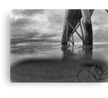 Under the sea. B & W Canvas Print