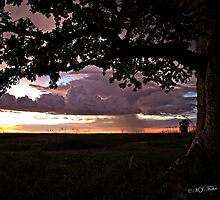 Wet season sunset. Derby, West Kimberley, Western Australia. by Mary Jane Foster