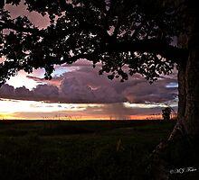 Wet season sunset. Derby, West Kimberley, Western Australia. by Mary Jane Foster