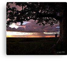 Wet season sunset. Derby, West Kimberley, Western Australia. Canvas Print