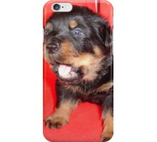 Rottweiler Puppy Howling For Attention iPhone Case/Skin