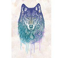 I Dream of Wolf Photographic Print