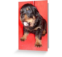 Rottweiler Puppy Howling For Attention Greeting Card