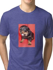 Rottweiler Puppy Howling For Attention Tri-blend T-Shirt