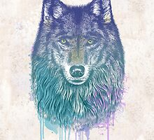 I Dream of Wolf by RCaldwell