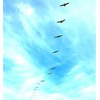 Birds - Photography iPhone cases by ddfoto