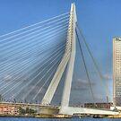 Erasmus bridge by Peter Wiggerman