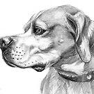 Pointer dog portrait g037 by schukina by schukinart