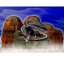 Dragon Guardian  Photographic Print