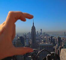 From the Top.. by Lauren Tucker