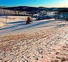 Smooth hills in winter wonderland by Patrick Jobst