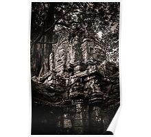 Face of the ruin, Ta Som, Angkor Poster