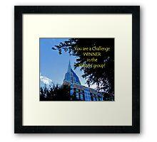 Banner - Shelters - Challenge Winner Framed Print