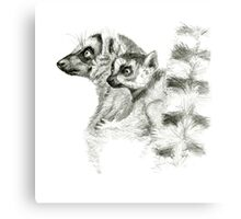 Ring-Tailed Lemur with baby sk015 by schukina Canvas Print