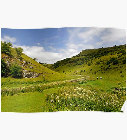 Cressbrook Dale near to Wardlow  Poster
