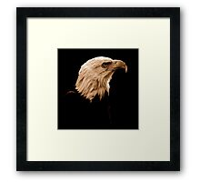 Black With A Hint Of Majestuous Element Framed Print