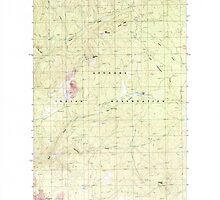 USGS Topo Map Washington State WA Turtle Lake 244371 1985 24000 by wetdryvac