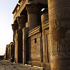 Kom Ombo temple at sunset by Siegeworks .