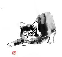 stretching cat by pechane