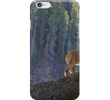Mountain Goats iPhone Case/Skin