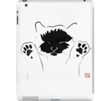 funny cat iPad Case/Skin