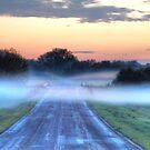 The Road Home by Dawne Olson