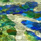 Underwater Mosaic by stevefinn77