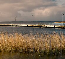 Milang Jetty by Dennis Wetherley