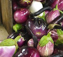 All the Eggplants by Betty Mackey