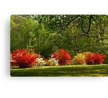 2013 Calendar - Country Roads - May Canvas Print