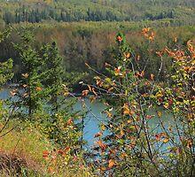 North Saskatchewan River in September by Jim Sauchyn