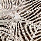 Ribs Invert by artkitecture