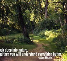 Woods with Einstein Quote by Courtney Hubley