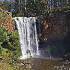 Trentham Falls, Victoria, Australia by haymelter