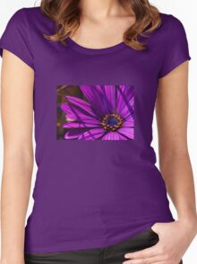 Purple African Daisy Close Up Women's Fitted Scoop T-Shirt