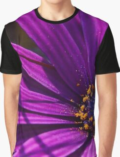 Purple African Daisy Close Up Graphic T-Shirt