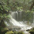 Russell Falls, Tasmania by Debra LINKEVICS