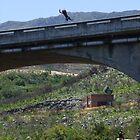 Palmiet River bridge- brave by croust
