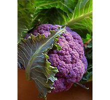 Purple Cauliflower Photographic Print