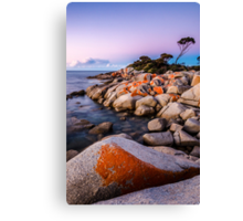 Bay of Awesome Canvas Print