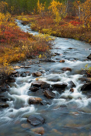 Autumn creek by ilpo laurila