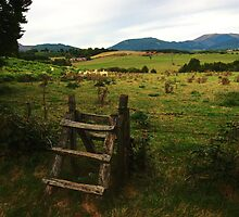 Countryside Fence by photoshot44