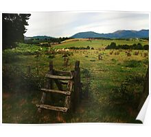 Countryside Fence Poster