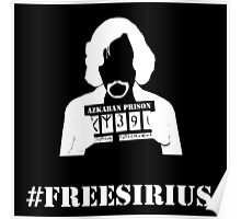 FREE SIRIUS Poster