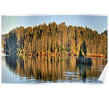 Let Us Reflect - Narrabeen Lakes, Sydney Australia Poster