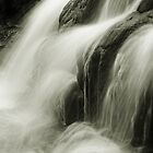 Streaming Waterfall by Roupen  Baker