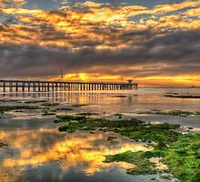 Point Lonsdale Sunrise by Danielle  Miner