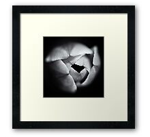 Flowerscapes - BW Tulip Framed Print