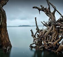 Floating Island by Michael Howard