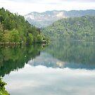 Lake Bled - Slovenia by Arie Koene